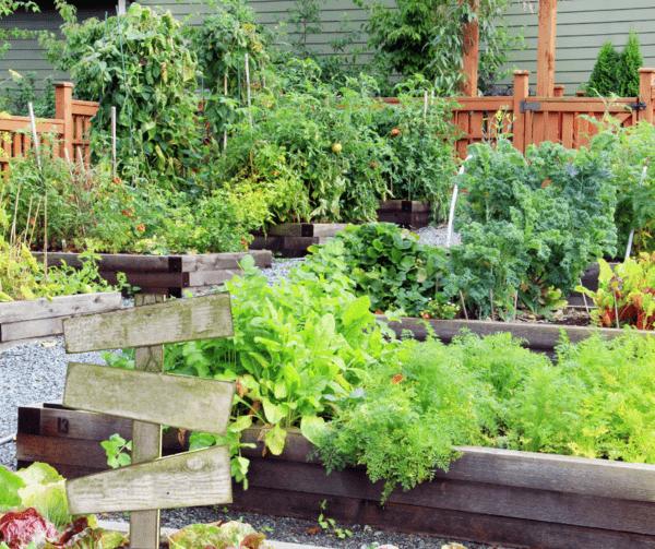 5 astuces pour embellir un petit jardin